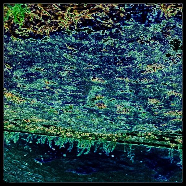 La Seine encore