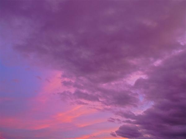 Noche, rosa