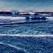 The Sea - In my dreams