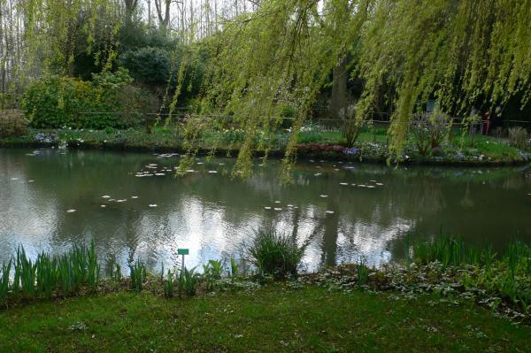 Garden promenade et étang