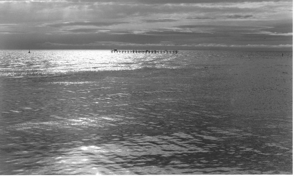 La mer australe