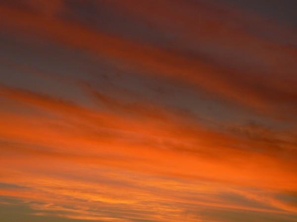 Sunset Mauve